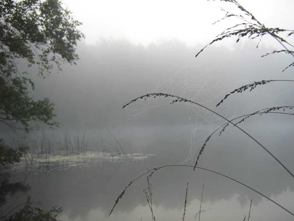 Nøkken i søen vaerude.dk