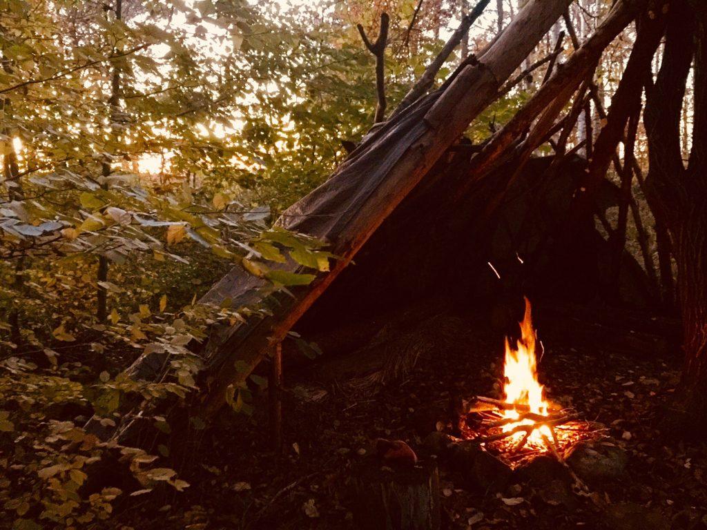 Shelter med bå