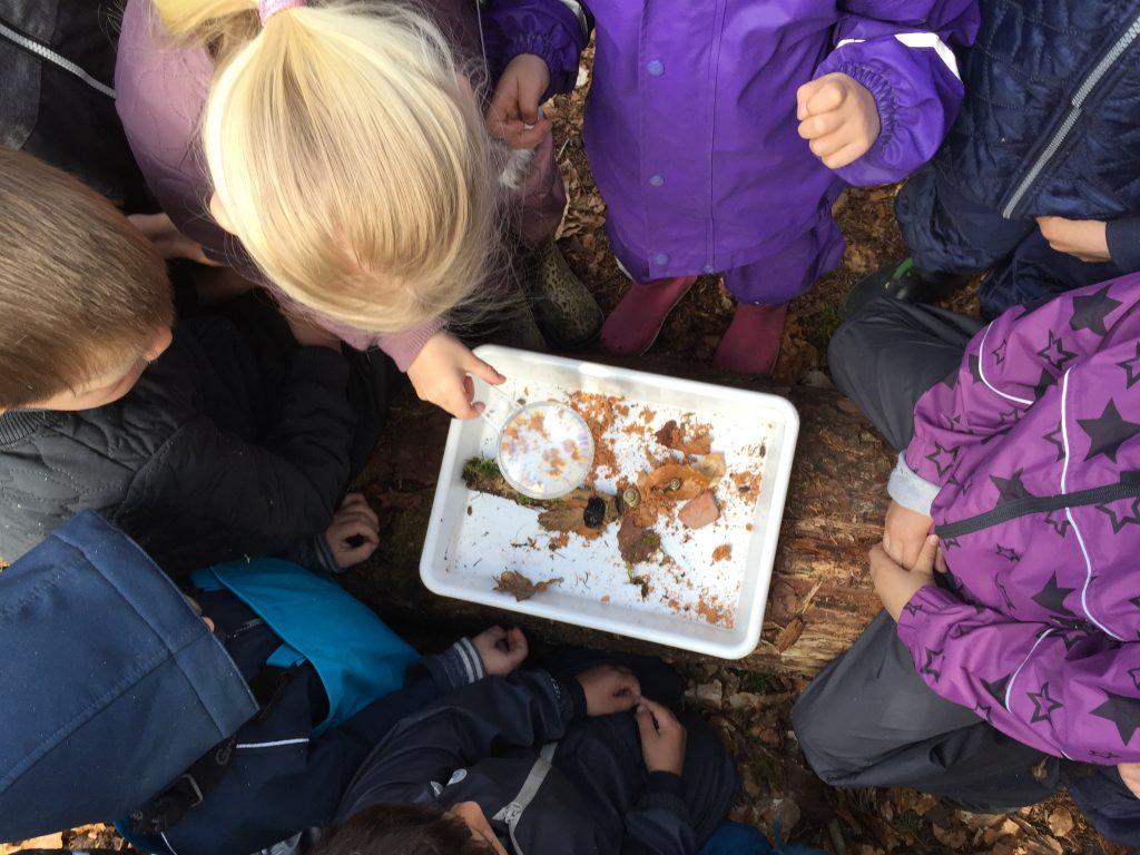 Krible krable på Nordfyn